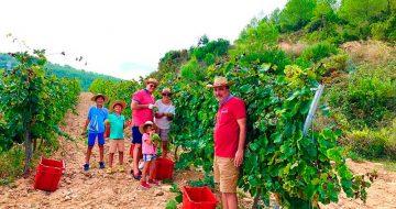 agroindustria-ace-espana-rusia-visita-campo