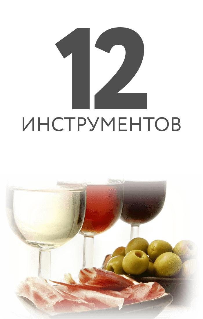 12-instrumentos-acea-consorcio-rus